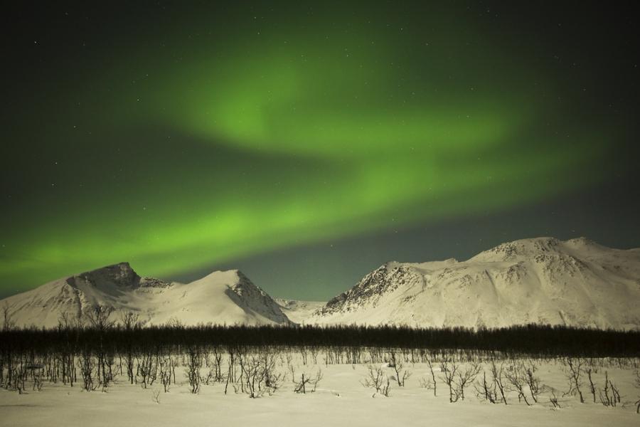 Aurora Borealis Tromso III, Northern Lights