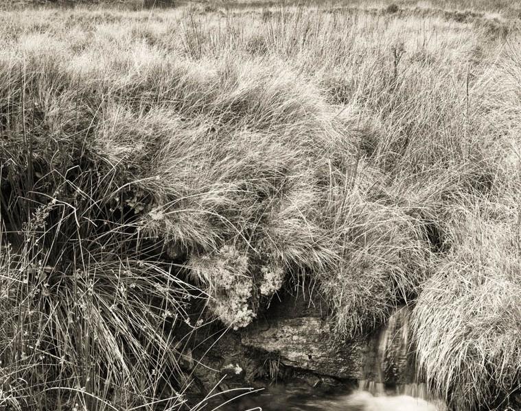 Portrait Of The Upper Neuadd Slopes, Brecon Beacons