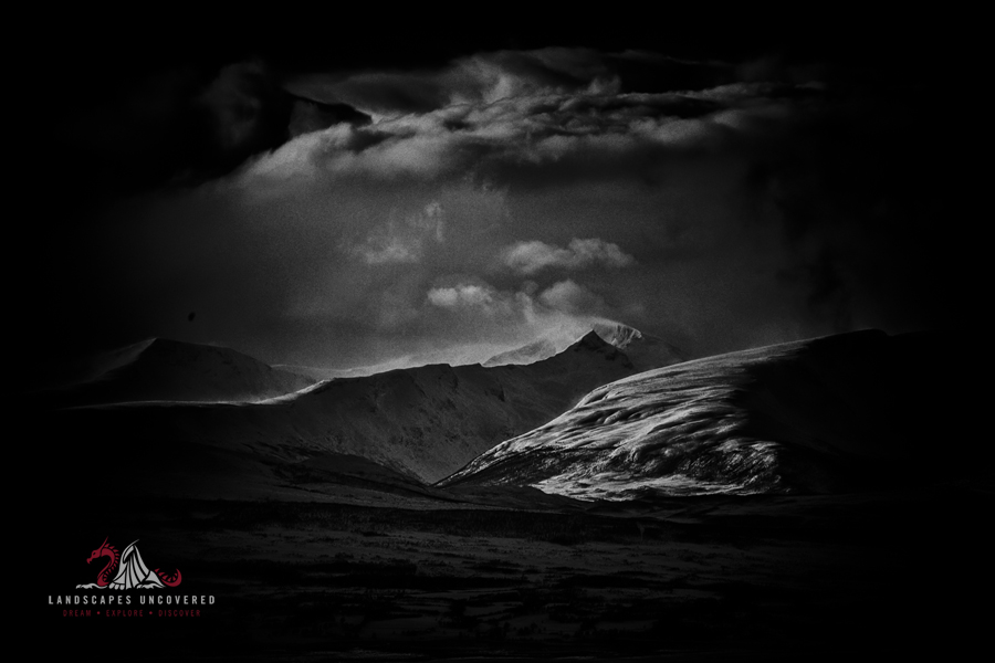 The dark landscape, a collection of black and white ...